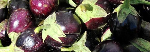 culture-aubergine